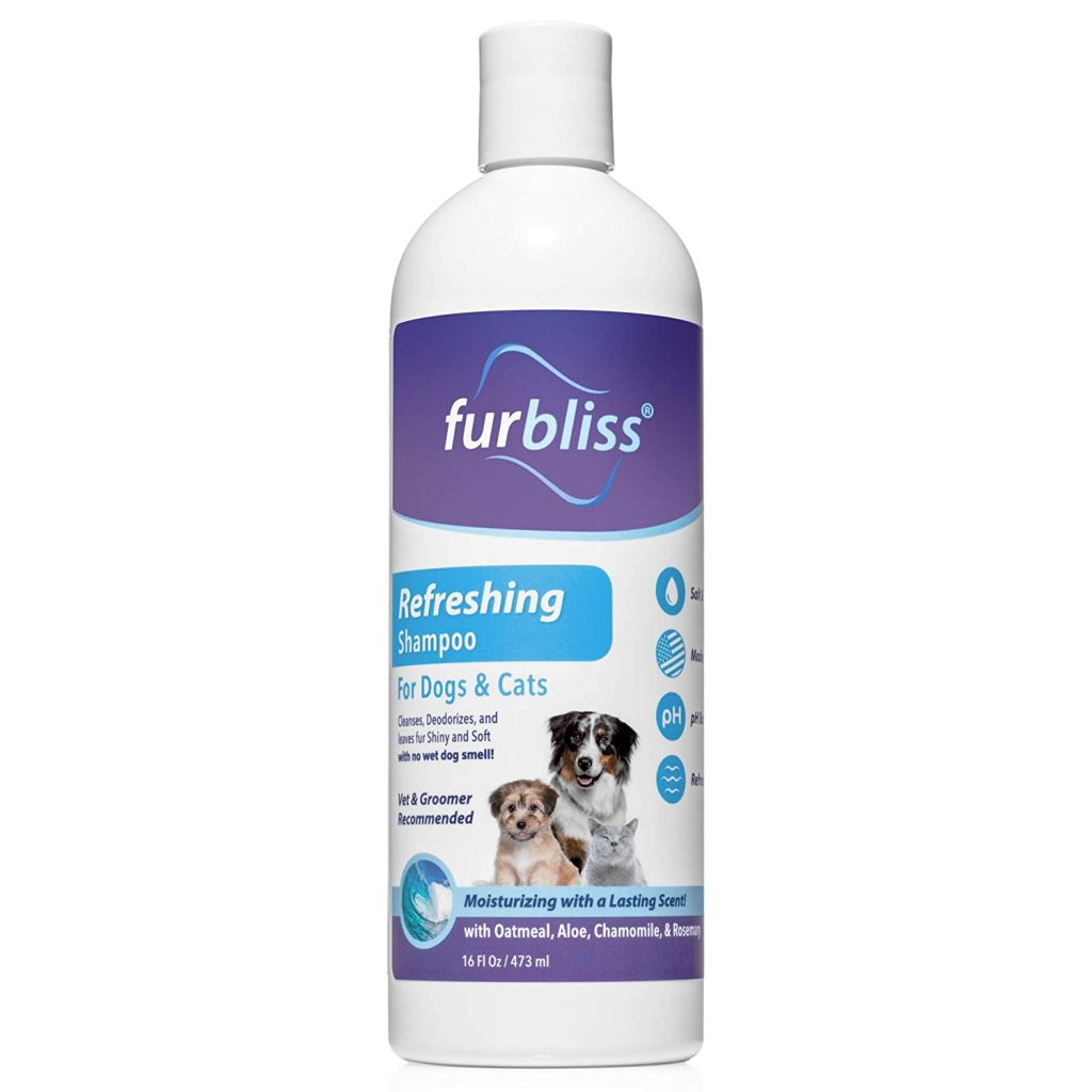 Top-Rated Beagle Shampoo that Smells Good for a Long Time