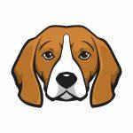 Mr. Beagle